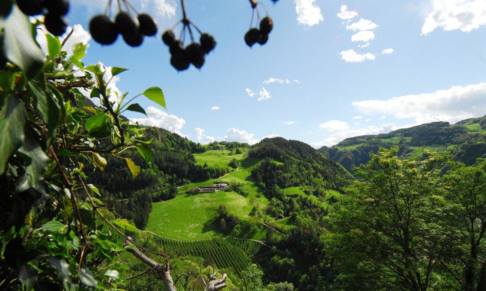 Ausblick vom Tonderhof