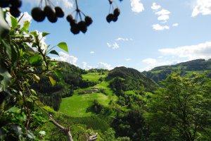 tonderhof-kastelruth-aussblick